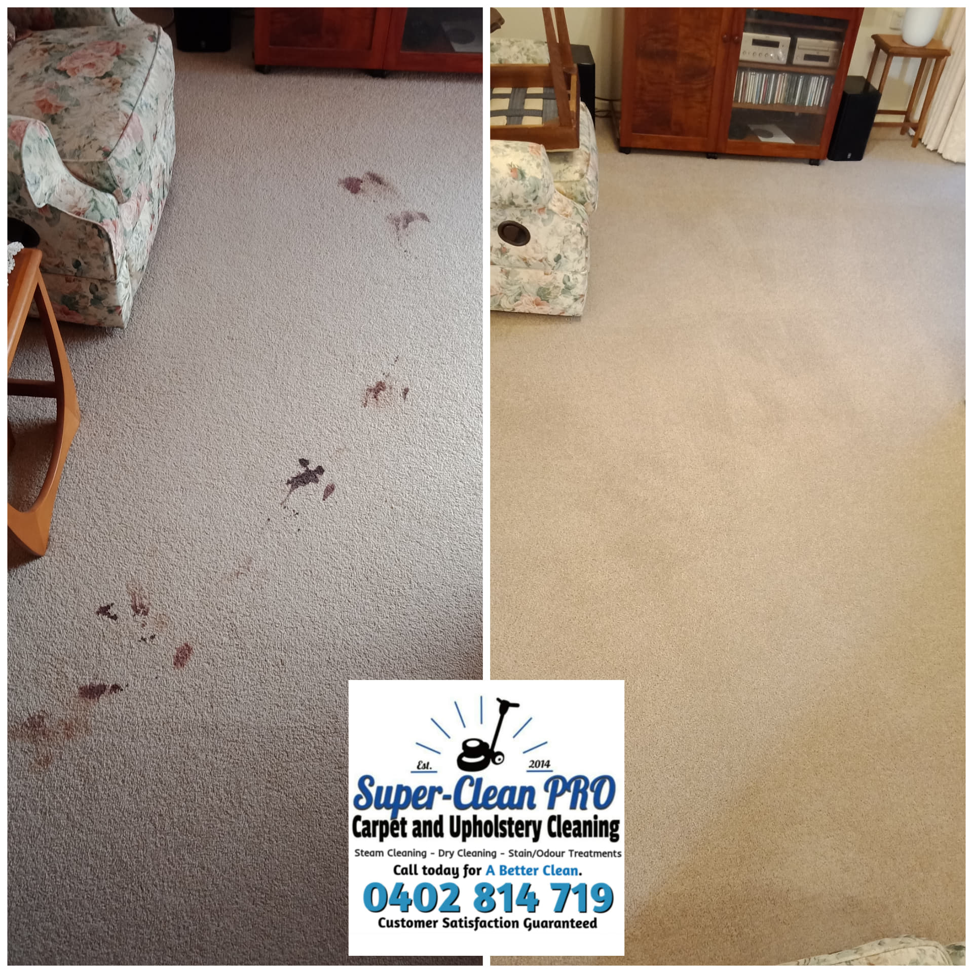 Stain Removal And Odour Treatment Ringwood Super Clean Pro